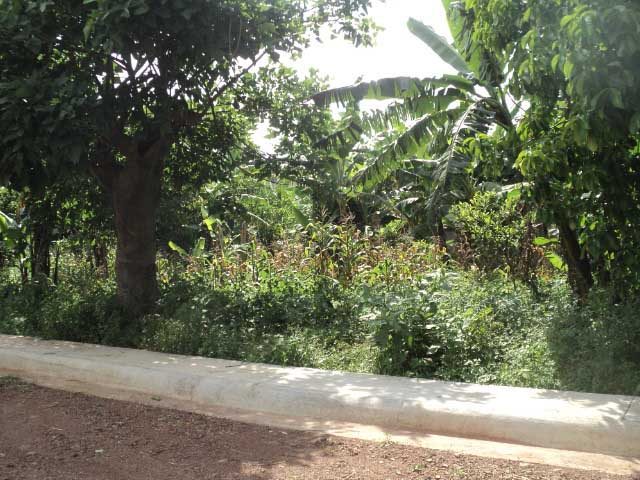Barrió Socorro, Santo Domingo, Heredia Área 964.57m2 LOTE