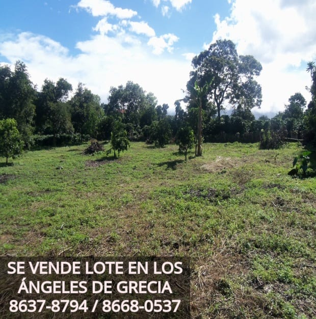 Terreno en Los Angeles de Grecia