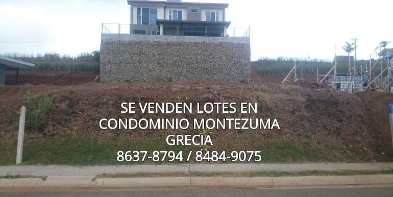 Monte4